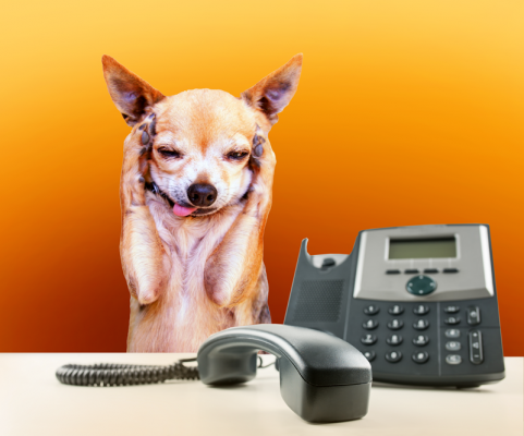 Dog-Phone-Blooper