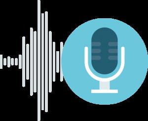 custom audio prompts