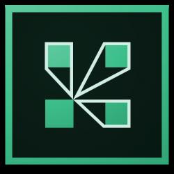 Adobe Connect Provider